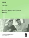 Windows Azure Data Services (basics)